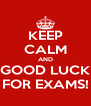 KEEP CALM AND GOOD LUCK FOR EXAMS! - Personalised Poster A4 size