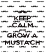 KEEP CALM AND GROW A MUSTACH - Personalised Poster A4 size