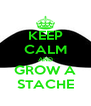 KEEP CALM AND GROW A STACHE - Personalised Poster A4 size