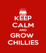 KEEP CALM AND GROW  CHILLIES - Personalised Poster A4 size