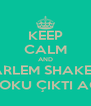 KEEP CALM AND HARLEM SHAKE'İN BOKU ÇIKTI AQ - Personalised Poster A4 size