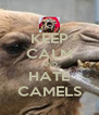 KEEP CALM AND HATE CAMELS - Personalised Poster A4 size