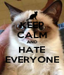 KEEP CALM AND HATE EVERYONE - Personalised Poster A4 size