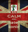 KEEP CALM AND hate  sonic - Personalised Poster A4 size