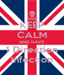 KEEP CALM AND HAVE 1 Direction Infection - Personalised Poster A4 size