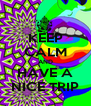 KEEP CALM AND HAVE A NICE TRIP - Personalised Poster A4 size