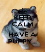 KEEP CALM AND HAVE A PUPPY... - Personalised Poster A4 size