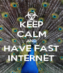 KEEP CALM AND HAVE FAST INTERNET - Personalised Poster A4 size