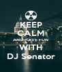 KEEP CALM AND HAVE FUN WITH DJ Senator - Personalised Poster A4 size