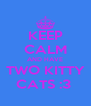 KEEP CALM AND HAVE TWO KITTY CATS :3  - Personalised Poster A4 size