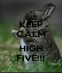 KEEP CALM AND HIGH FIVE!!! - Personalised Poster A4 size