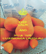 KEEP CALM AND HOJE TEM COXINHARIA LADISLAU - Personalised Poster A4 size
