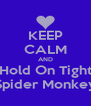 KEEP CALM AND Hold On Tight Spider Monkey - Personalised Poster A4 size