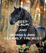 KEEP CALM AND HORSES ARE CLEARLY THE BEST - Personalised Poster A4 size