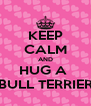 KEEP CALM AND HUG A  BULL TERRIER - Personalised Poster A4 size