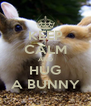 KEEP CALM AND HUG A BUNNY - Personalised Poster A4 size