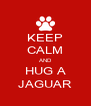 KEEP CALM AND HUG A JAGUAR - Personalised Poster A4 size