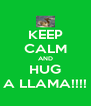 KEEP CALM AND HUG A LLAMA!!!! - Personalised Poster A4 size