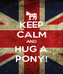 KEEP CALM AND HUG A PONY! - Personalised Poster A4 size