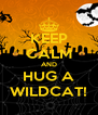 KEEP CALM AND HUG A WILDCAT! - Personalised Poster A4 size