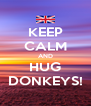 KEEP CALM AND HUG DONKEYS! - Personalised Poster A4 size