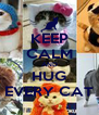 KEEP CALM AND HUG EVERY CAT - Personalised Poster A4 size