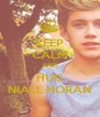 KEEP CALM AND HUG NIALL HORAN - Personalised Poster A4 size