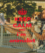 KEEP CALM AND i'm  animalist - Personalised Poster A4 size
