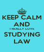 KEEP CALM AND I REALLY LOVE STUDYING LAW - Personalised Poster A4 size