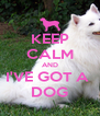 KEEP CALM AND I'VE GOT A  DOG - Personalised Poster A4 size