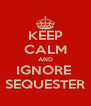 KEEP CALM AND IGNORE  SEQUESTER - Personalised Poster A4 size