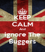 KEEP CALM And ignore The Buggers - Personalised Poster A4 size
