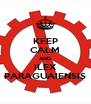 KEEP CALM AND ILEX PARAGUAIENSIS - Personalised Poster A4 size