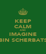 KEEP CALM AND IMAGINE ROBIN SCHERBATSKY - Personalised Poster A4 size