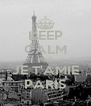 KEEP CALM AND JE T'AMIE PARIS - Personalised Poster A4 size