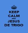 KEEP CALM AND JESUS DE TRIGO - Personalised Poster A4 size