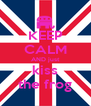 KEEP CALM AND just kiss the frog - Personalised Poster A4 size