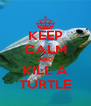 KEEP CALM AND KILL A TURTLE - Personalised Poster A4 size