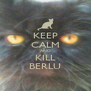 KEEP CALM AND KILL BERLU - Personalised Poster A4 size