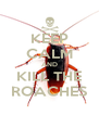 KEEP CALM AND KILL THE ROACHES - Personalised Poster A4 size