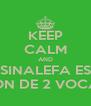 KEEP CALM AND LA SINALEFA ES LA UNIÓN DE 2 VOCALES - Personalised Poster A4 size