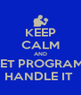 KEEP CALM AND LET PROGRAM  HANDLE IT  - Personalised Poster A4 size