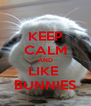 KEEP CALM AND LIKE  BUNNIES - Personalised Poster A4 size