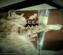 KEEP CALM AND like cat - Personalised Poster A4 size