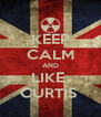 KEEP CALM AND LIKE  CURTIS  - Personalised Poster A4 size
