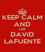 KEEP CALM AND LIKE DAVID LAFUENTE - Personalised Poster A4 size