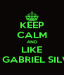 KEEP CALM AND LIKE DJ GABRIEL SILVA - Personalised Poster A4 size