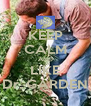 KEEP CALM AND LIKE Dr. GARDEN - Personalised Poster A4 size