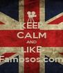KEEP CALM AND LIKE Famosos.com - Personalised Poster A4 size