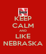 KEEP CALM AND LIKE NEBRASKA - Personalised Poster A4 size